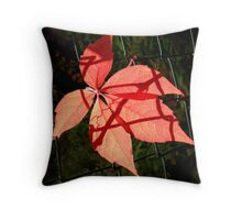 Autumn Leaf, Gold,Red,Brown,Backlit Throw Pillow
