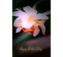 Happy Mother's Day card with daffodil Photographic Print