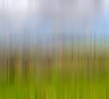 The Blurred Flower Meadow by cofiant