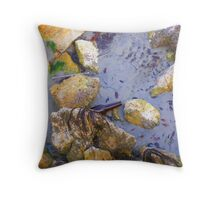 Bottle & Straw in the Water Throw Pillow