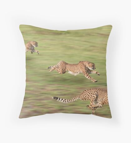 Cheetah shot on a timed run in South Africa Throw Pillow
