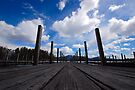The Dock by John Schneider