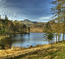 Blea Tarn In April by Jamie  Green