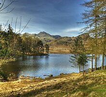 Blea Tarn In April by Jamie  Green