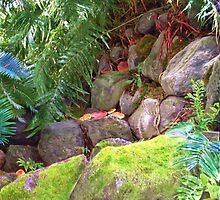 My own paradise of mossy rocks2 by richair