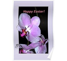 Purple orchids Easter card Poster