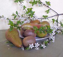 Pear, Kiwi and Plum-tree-twig by Heidi Mooney-Hill