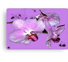 Purple orchids on purple background Canvas Print