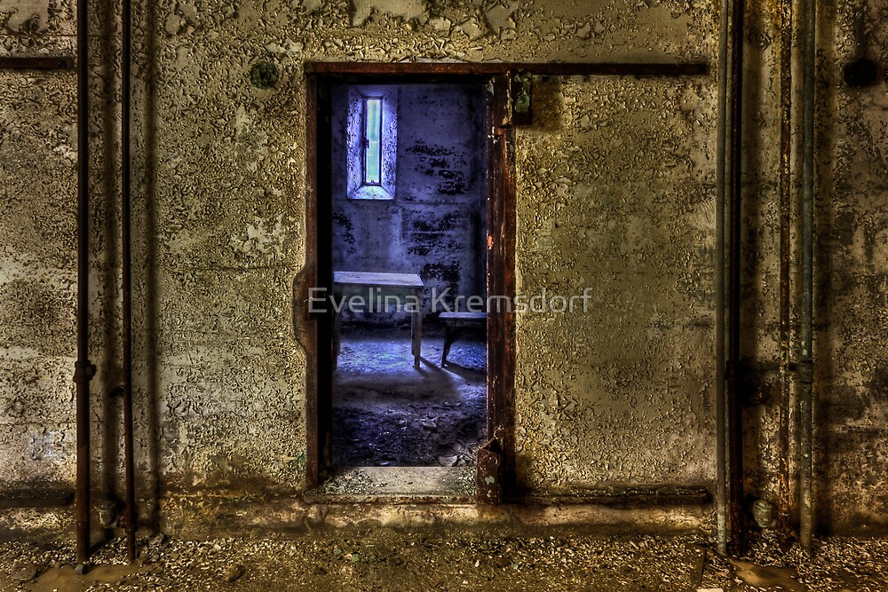 Memories from the Room by Evelina Kremsdorf