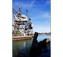 Crane again Photographic Print