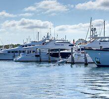 Waterfront Marina by Pete Labrozzi