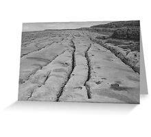 Limestone pavement in black & white Greeting Card