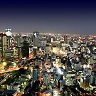 Osaka by Night by Nasko .