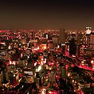 Osaka by Night - Japan by Bruno Beach