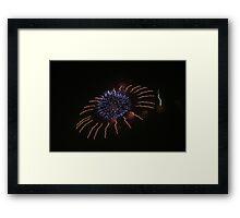 Fireworks over Tokyo - Hanabi in august Framed Print