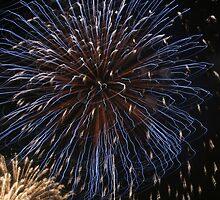 Fireworks over Tokyo - Hanabi in august by Digital Editor .