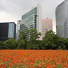 Orange Flowers in Tokyo City - Ginza Area by Bruno Beach
