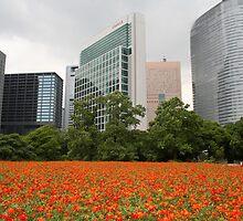 Orange Flowers in Tokyo City - Ginza Area by Nasko .