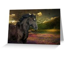 Marny In The Field Of Springtime Colours Greeting Card