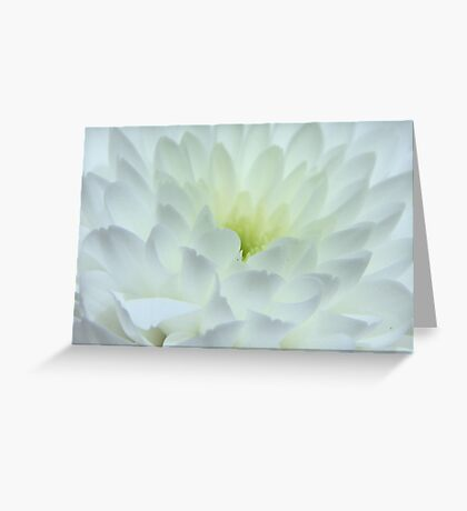 Abstract White Greeting Card