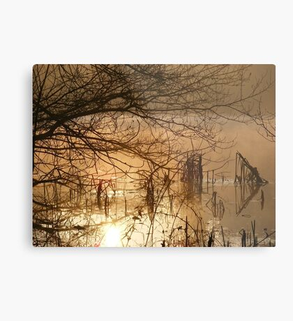 More dawn pics Metal Print