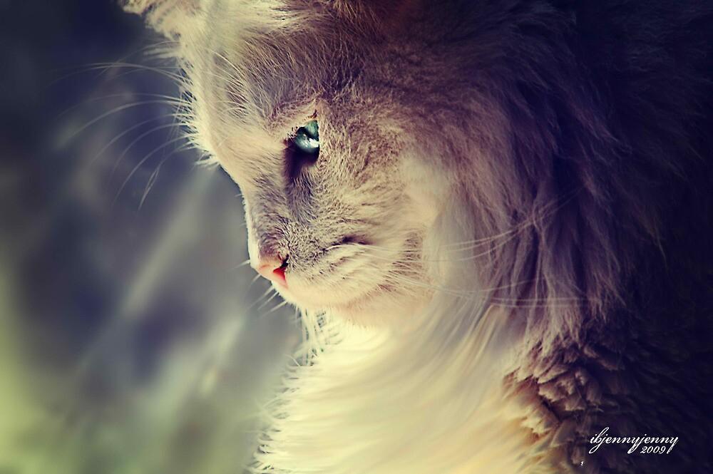 Lend Me a Kitten by ibjennyjenny