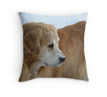 Who Goes There?! FEATURED PHOTO Throw Pillow