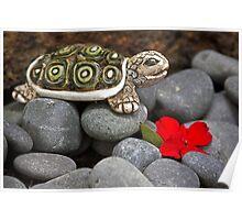 Turtle's  Pebble Garden Poster