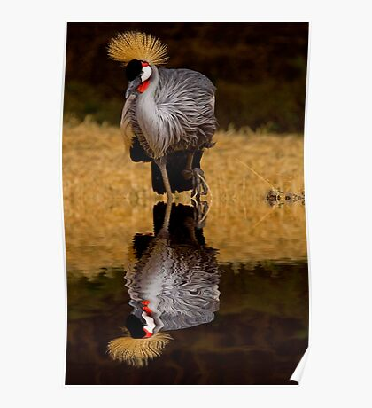 East African Crowned Crane #2 Poster