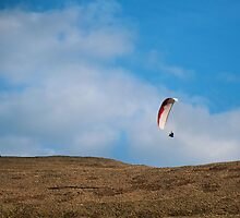 Hang Glider by Michelle McMahon