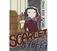 hamster series-2013-scarlet street Photographic Print