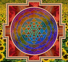 Yantra and the sunflower by Bill Brouard