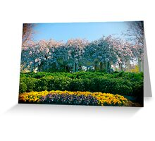 Wisteria On Trellis Front Flower View by Jonathan Green USA Greeting Card