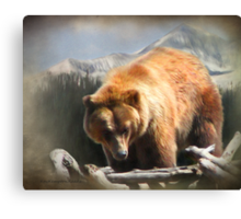 Grizzly at Lone Mountain Canvas Print