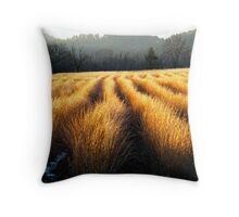 SUNLIT GRASSES,CADES COVE Throw Pillow