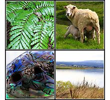 New Zealand Wall Montage Photographic Print
