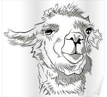 The Great and Terrible Llama Poster