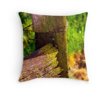 Old Post Throw Pillow