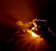MIDNIGHT SUN by RoseMarie747