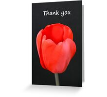 Red Tulip Thank You Card Greeting Card