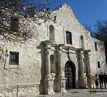 "I Will Always ""Remember The Alamo"" by Debbie Robbins"