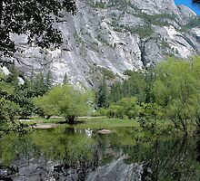Mirror Lake - Yosemite by Stephen Vecchiotti