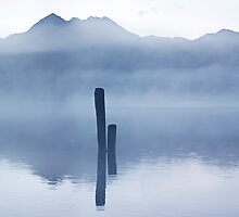 Posts in the Fog by Odille Esmonde-Morgan