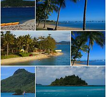 Island Montage by VickieP