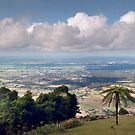 Shoalhaven from Mount Cambewarra... by Les Boucher