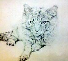 Kitty by windsprite17