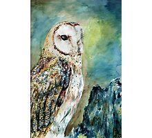 Bright Owl Photographic Print
