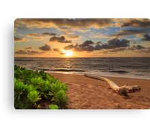 Sunrise In Kapaa Canvas Print