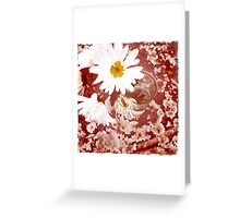 Daisy and Lichen Hand In Hand Greeting Card