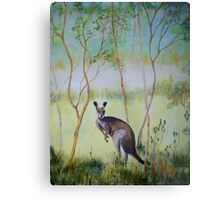 Think I see Kangaroo Metal Print